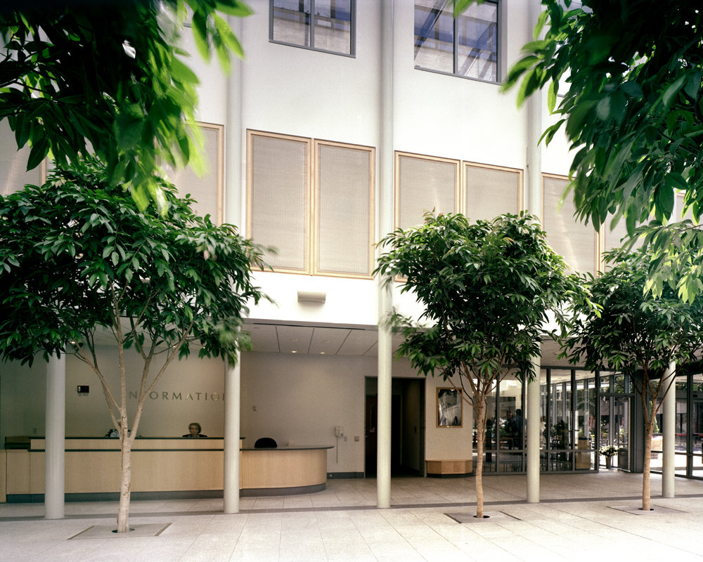 6 tskp hartford hospital lobby expansion renno interior detail lobby entrance trees columns help desk 1400 xxx q85